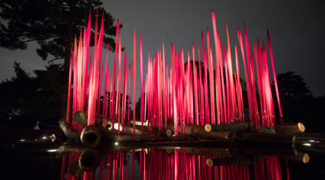 NYBG CHIHULY 02 Red Reeds on Logs 2017 470x260 1